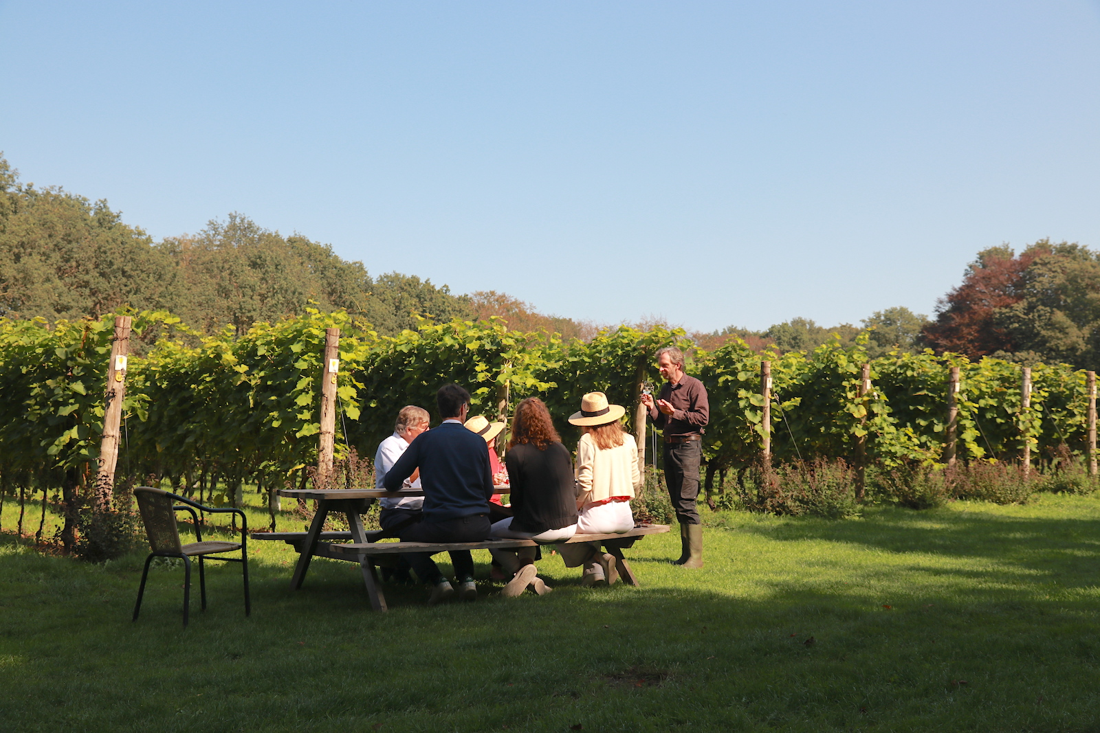 Winetasting and tour Wijngaard Aan de Breede Beek